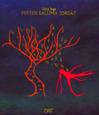 Ferten eallimajoksat av Stina Inga (1995)