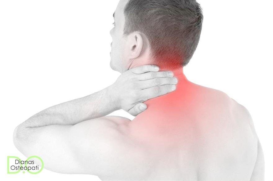 Kraniell osteopat Halland – behandling med kraniell osteopati mot ryggvärk, nackont, muskel & ledvärk. Dianas Osteopati i Ullared, Falkenberg
