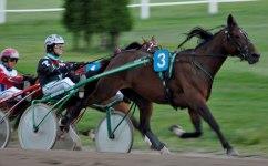 2008 Lady Ann och Jonny Takter vinner lätt på Kalmar