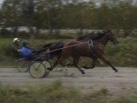 2007 Västerbo Strega och Snuddi Movi På rakan med Lasse och Mikael