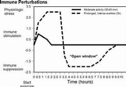 Tidsfaktorns betydelse för immunförsvaret vid hård fysisk belastning