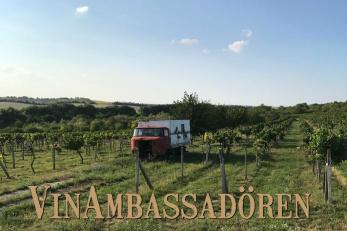 90.521  Den Slovakiska vinrevolutionen - den nya generationen viner! (Lördagen den 10/3)