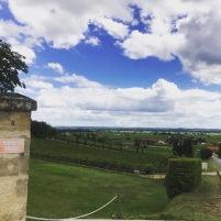 38. BORDEAUX: Vinregionernas konung! (torsdag 11/4)