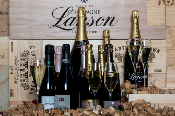 26.5 Champagne & Mousserande viner i toppklass! (lördag 2/2)