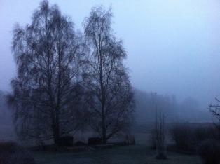 Denna vinterns väder gråkallt och bistert