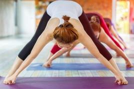 se aktuella yogakurser >