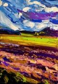 Windy fields: 50x70 cm, oil on canvas