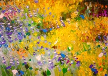 Yellow flowerfield: 50x70 cm, oil on canvas - SOLD
