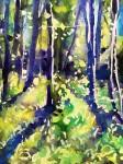 Kinnekulle ramson 3: watercolor on paper, 25,4x17,8 cm - SOLD