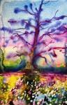 The Oak/Eken: 25,4x17,8 cm, Watercolor on paper - SOLD