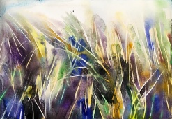 Beach grass 1: 25,4x17,8 cm, watercolor on paper - price upon request