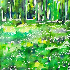 Kinnekulle ramson 1: watercolor on paper, 25,4x17,8 cm - SOLD