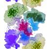 Aqualotic - Aqualotic blå lila grön