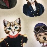Katter och hundar (pris per decimeter)