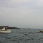 003-Ett lass virke till havs!
