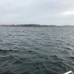 N Grötö 1 (Large)