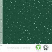 Spots evergreen