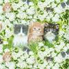 Tre kattungar - Tre kattungar