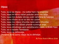 Oljese... dikt på romani