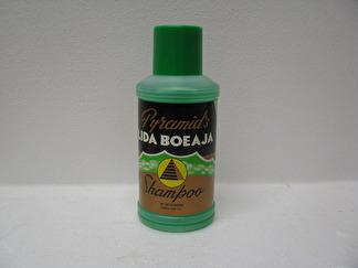 Lida Boeaja Shampoo -