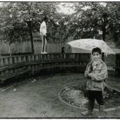 Pojkar i Braxenparken efter internationella festen Fisksätra