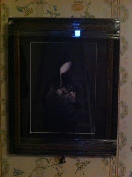 """Fotoserie """"RODNADER""""  fotokonstnär Ava Valsten"""
