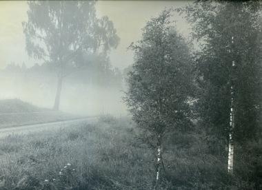 """Fotoserie """"SUMMERSORROW"""" fotokonstnär Ava Valsten"""