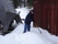 Stubben snöröjer 2011