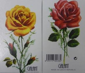 Gul ros på framsidan röd ros på baksidan