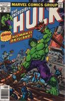 Incredible Hulk (1962-1999 1st Series) #219