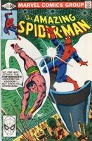 Amazing Spider-Man (1963 1st Series) #211