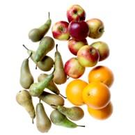 Fruktkassen