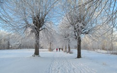 Villa Arelid På Miljö Vinter Promenad