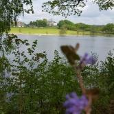 1. Villa Arelid Nyheter Nääs Slott