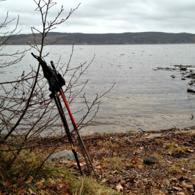 Villa Arelid Nyheter Vinterpromenad 2016 (2)