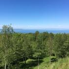 Villa Arelid Nyheter Utflykt (8)