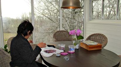 Villa Arelid På Vinterträdgård Aktivitet