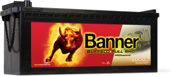 Banner Buffalo Bull 12V 145Ah SHD PRO 64503 - Banner Buffalo Bull 12V 145Ah SHD PRO 64503