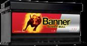Banner Power Bull P8820