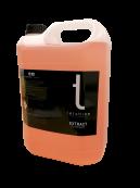 Tershine Extract 5 L
