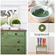 Boxwood 230g