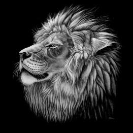 Lejon svartvit, rund, 20x20cm - Lejon svartvit