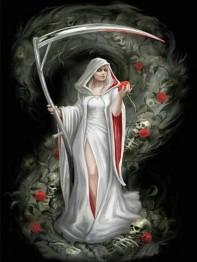 Deadly rose, fyrkant, 50x65cm -