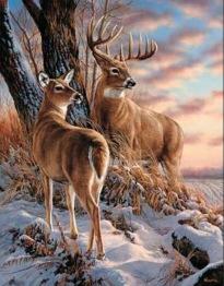 Renar i vinterlandskap, fyrkant, 50x60cm -