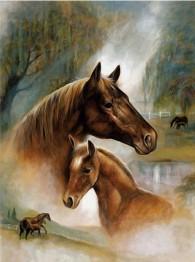 Häst kärlek, fyrkant, 40x50cm -