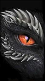 Drakens öga, fyrkant, 40x60cm - Leverans V26
