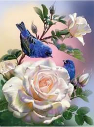 Blå fågel, fyrkant, 30x40cm - Blå fågel, fyrkant, 30x40cm