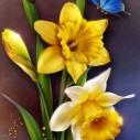 Påskliljor fjäril, fyrkant, 20x25cm