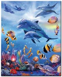 Delfin lek, fyrkant 50x60cm - Delfin lek 50x60cm