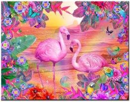 Flamingos, fyrkant 50x40cm - Flamingos 50x40cm
